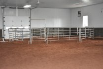 Round pen in the arena